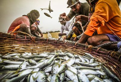 The Fishermen of Negombo