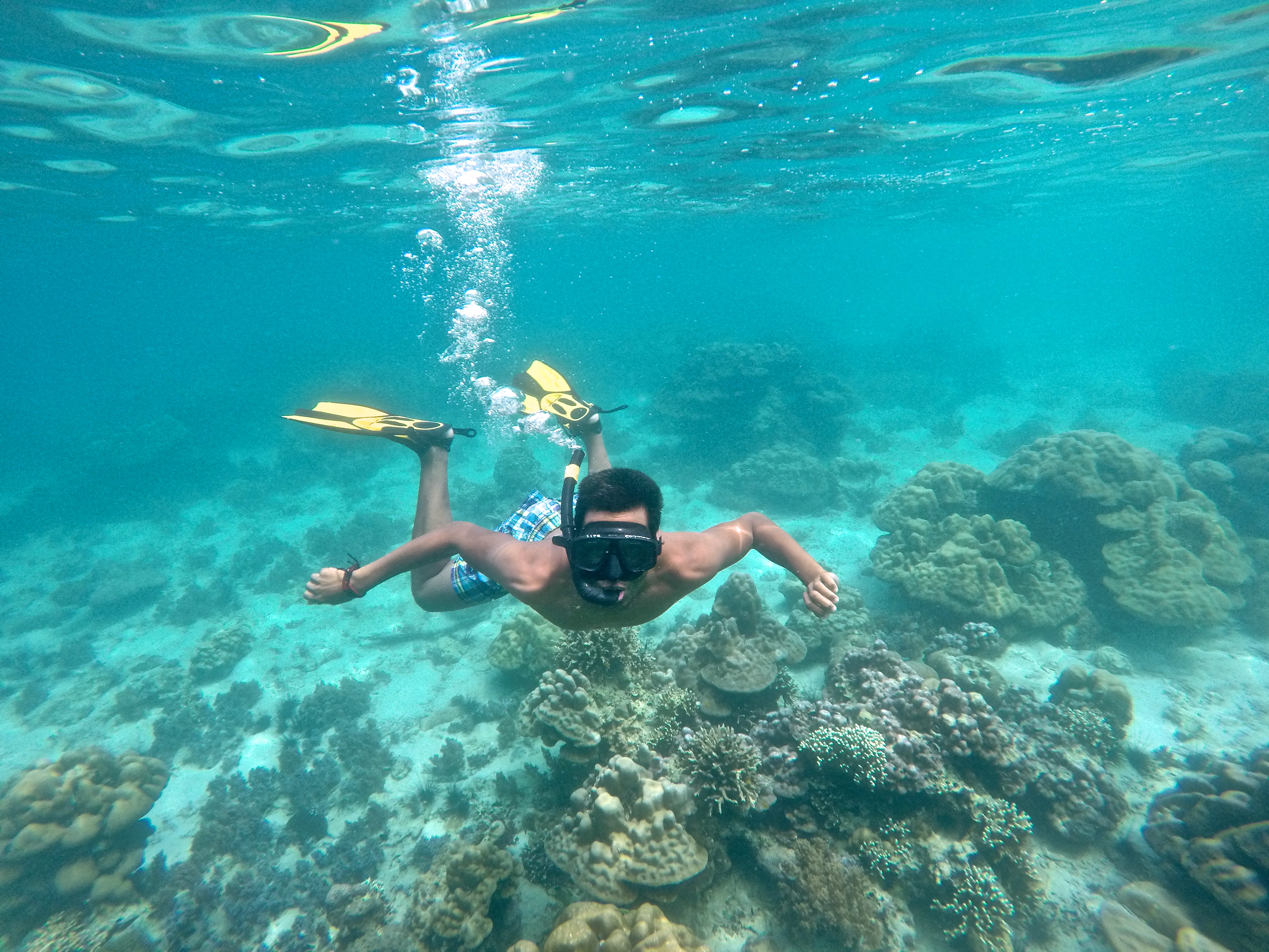 Snorkeling in Koh Lipe, Thailand