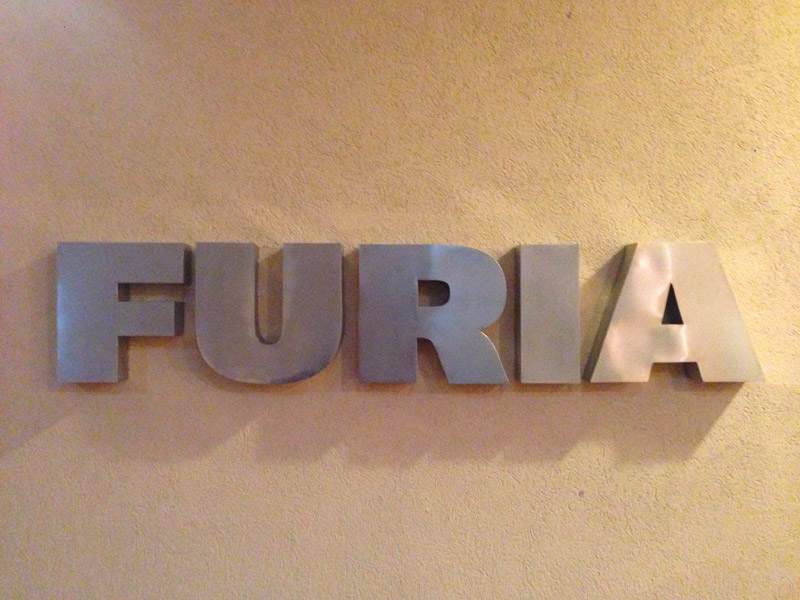 Furia world logo