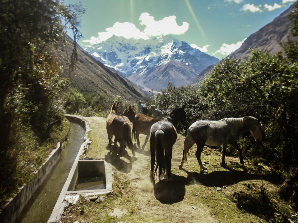 Salkantay trekking Peru