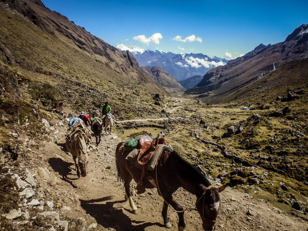 Salkantay pass 4600 meters Andes Region Peru