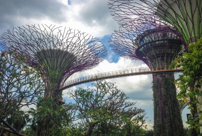 Gardens at the bay Singapore