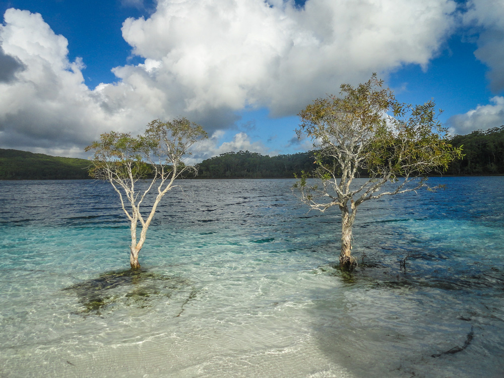 Lake Mckenzie Hervey Bay, Australië - Australia