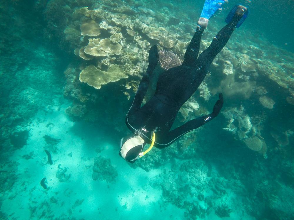 Great Barrier Reef - Australië - Australia
